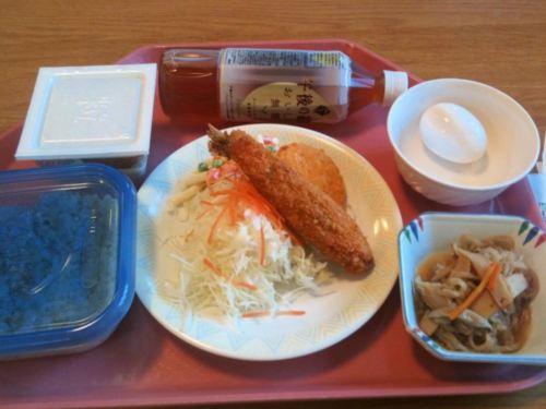 なでしこ健康生活ダイエット食事1