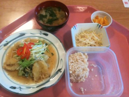 なでしこ健康生活ダイエット食事3